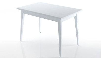 Стол обеденный Мустанг белый